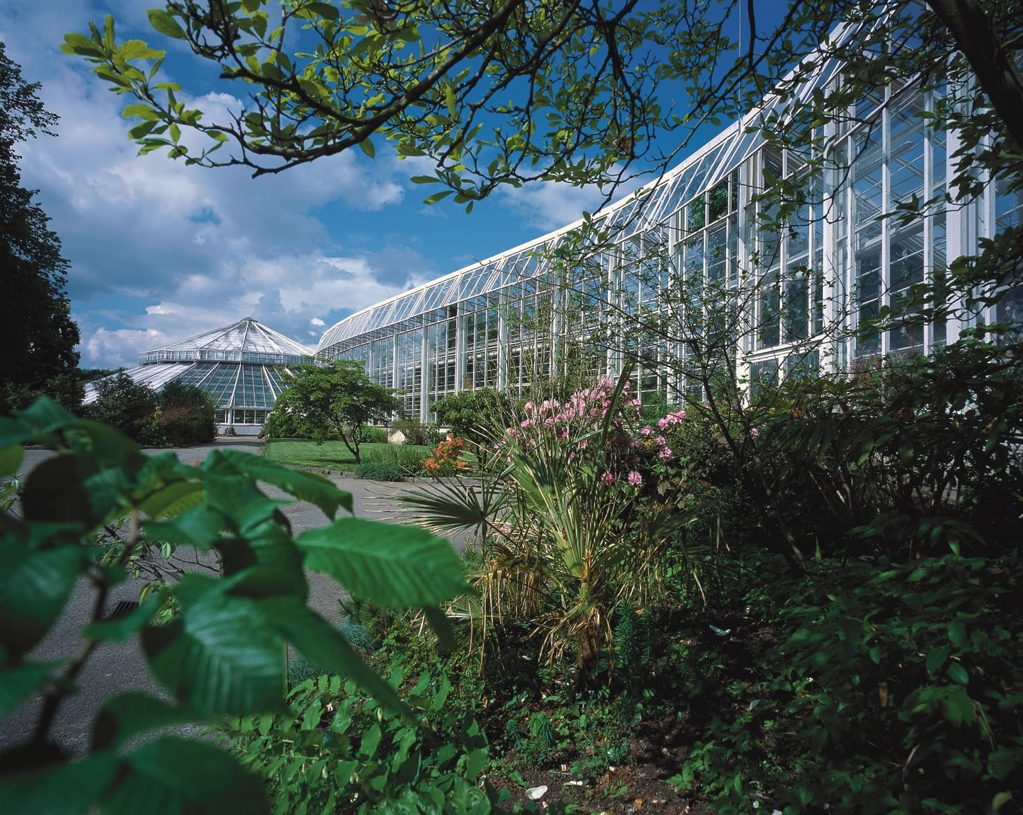 Væksthusene I Botanisk Have I Aarhus