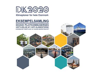 Eksempelsamling: DK2020 pilotkommunernes udfyldelse af CAPF-elementerne
