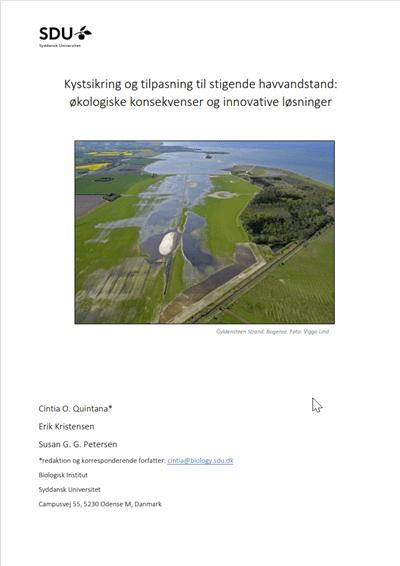 Kystsikring og tilpasning til stigende havvandstand