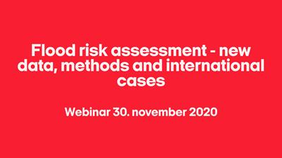 Flood risk assessment - new data, methods and international cases